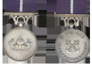 Image result for nau medal